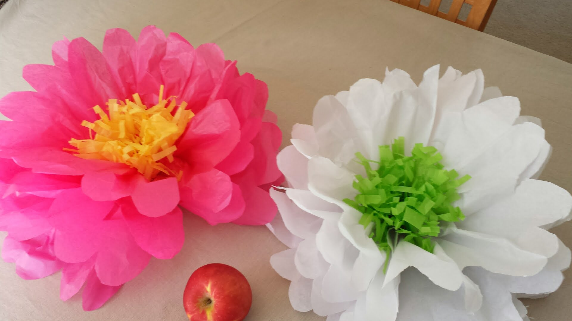 how to make big tissue paper flowers How to make tissue paper flowers tissue paper flowers make great decorations and party décor they're eye-catching and colorful as well as inexpensive.