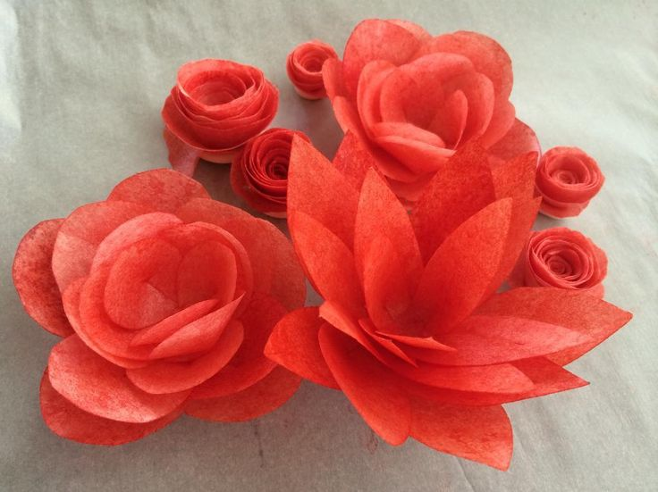 DIY Large wafer paper flowers