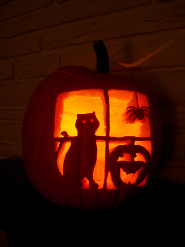 Halloween Pumpkin design Cat