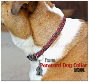 DIY Fishtail Paracord Dog Collar Instructions