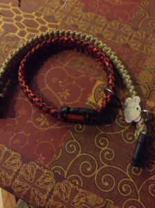 Make Paracord Dog Collar with D Ring