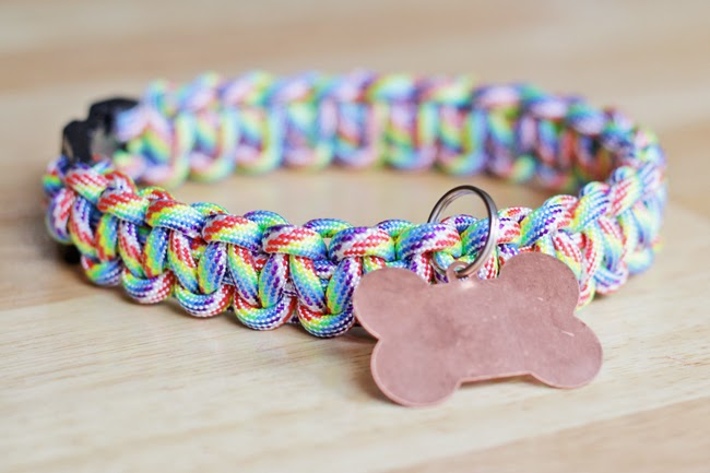 Make Your own Paracord Dog Collar