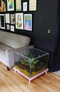 Fish Tank Coffee Table Design