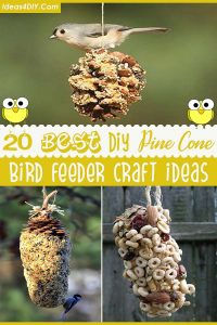 20 Best DIY Pine Cone Bird Feeder Craft Ideas