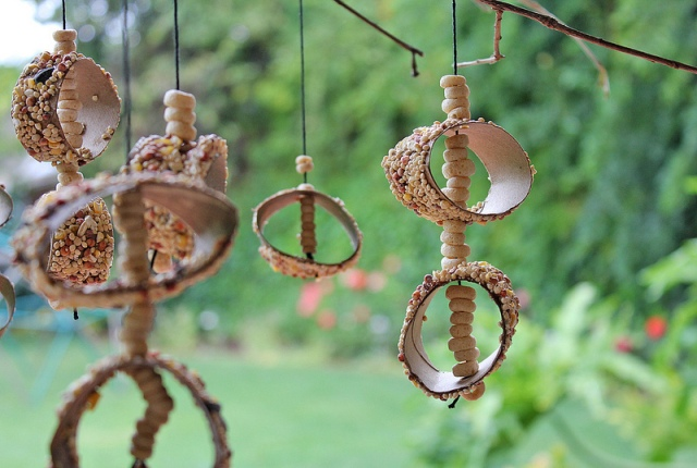 Cheerio Bird Feeder Instruction