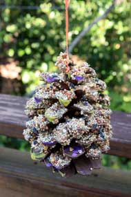 Pine Cone Bird Feeder Tutorial