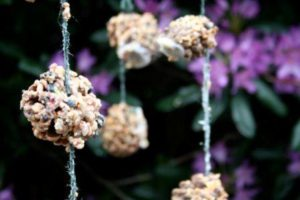 Pine Cone Bird Feeder using Shortening