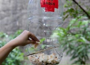 Bird Feeder Milk Jug