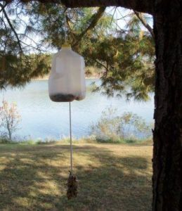 How to Make Milk Jug Bird Feeder