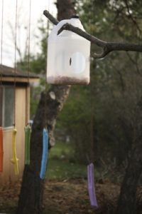 Milk Jug Bird Feeder Craft