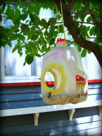 Milk Jug Bird Feeders