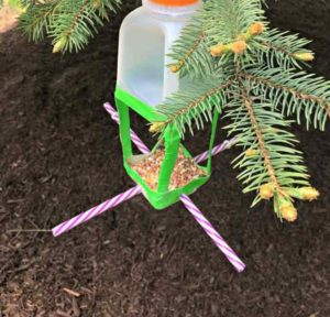 Recyled Milk Jug Bird Feeder