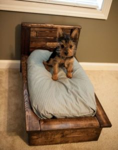Pallet Dog Bed Images