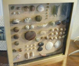 Beach Shadowbox Seashell