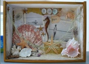 DIY Seashell Shadow Box