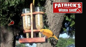 Bird Feeder from Wine Bottle