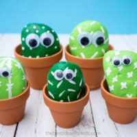 Cute Cactus Rock Painting Ideas