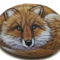 Fox Painted Rock DIY