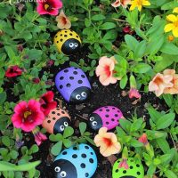 Painted Rocks Lady Bug