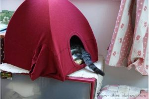 DIY Cat Tent Tshirt