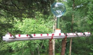 DIY PVC Tube Bird Feeder for Humming Birds