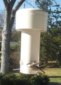 PVC Pipe Bird Feeders