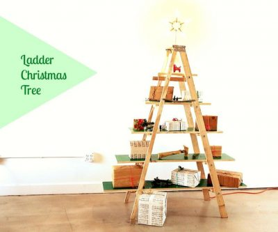 5 Tier Bookshelf Ladder