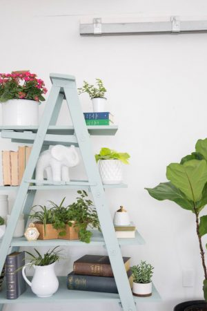 Heritage Bookshelf with Ladder