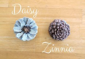 Flower Shaped Pine Cones
