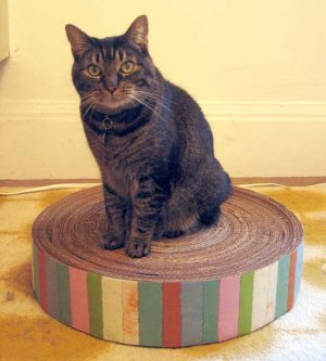 Cardboard Cat Scratcher for Christmas